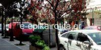 Με προβλήματα η Αποκομιδή Απορριμμάτων στην πόλη της Αλεξάνδρειας έως και την Πέμπτη, 18 Ιουλίου