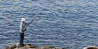 Προσωρινή παύση των αλιευτικών δραστηριοτήτων ως συνέπεια της επιδημικής έκρηξης της Covid-19